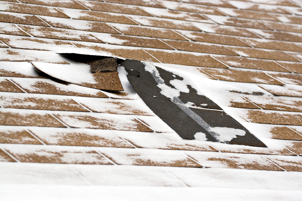 damaged shingles that need winter roof repair