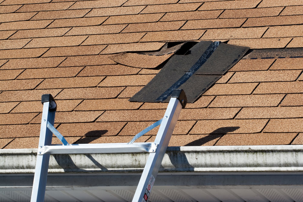 roof repairs in Idaho Falls